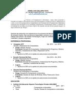 Curriculum Vitae Jorge Luis Guillinta Cuya 2015