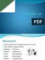 13. Hariz Ichsan, Cryptobia Sp