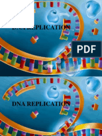 Dna Replication Ppt (2)