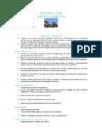PROYECTO_DE_AMBIENTE.doc