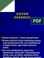 bab-8-sistem-ekskresi2.ppt