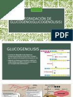 Degradación de Glucógeno(Glucogenolisis)