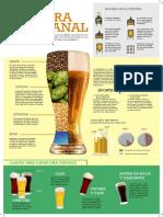 infografia birra