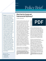 What Next for Energy and Environmental Diplomacy?