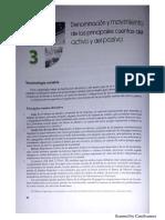 CAPÍTULO 3 Y OPERACIONES .pdf