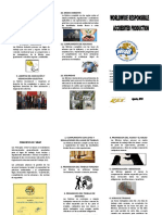 Triptico - Programa Wrap.docx