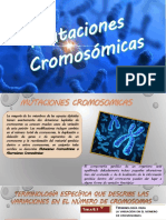 Mutaciones cromosomicas!