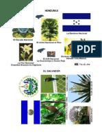 Simbolos Patrios de Centromaerica