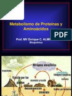 1127259657.Metabolismo de Aa y Prot.- 2014