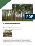 Malabar Neem Farming Information Guide _ Agrifarming