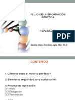 Replicacion BIOLMOL-2017.pdf