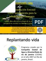 Resocializacion laboral de reclusos mediante reforestacion de la Mata Atlantica