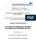 0 Informe Final de Flotación de Min Oxidados de Cu con Au 2013-2014.doc
