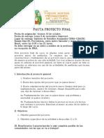 Pauta Proyecto Final