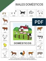 Animales Domesticos Vocabulario