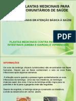 plantas_medicinais_contra_parasitoses_intestinais_ameba_e_giardia_e_verminoses.pdf