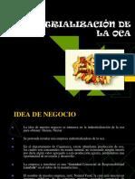 Industrialización de La Oca - Exponer