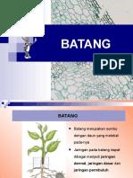 Tgs Batang