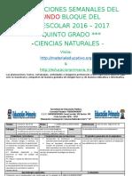 Plan5toB2CienciasNaturalesME.docx