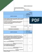 Cmi f1 Esi 12 Vi 24052017 Diagnostico Sg Sst