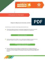 INFORME EJECUTIVO - PAUTAS