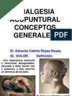 ANALGESIA ACUPUNTURAL Generalidades.pptx
