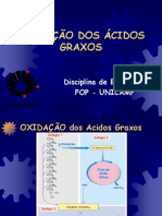 t11 2005 Oxidacao Acidos Graxos