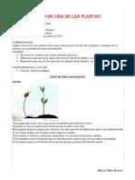Ciclo de Vida de Las Plantas Ciencia naturales