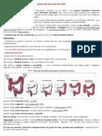 Cc - Doença Inflamatória Intestinal