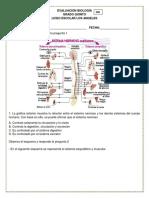 biologia 5 006.docx
