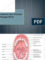 Anatomi dan Fisiologi Rongga Mulut KULIAH.pptx