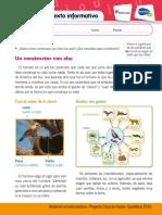 Texto Informativo 28-08