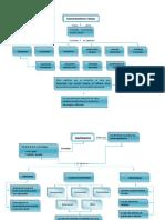 MAPA DE RAZONAMIENTO VERBAL.pdf