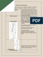 Desarrollo Del Taller de Anatomia