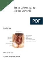 Diagnóstico Diferencial de Lesiones Vulvares