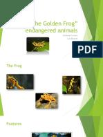The Golden Frog