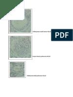 Folikel Primer Multi Laminar 40x10 (1)