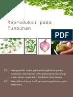 2. Reproduksi Pada Tumbuhan