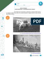 rev-industrial_pauta_pdf.pdf