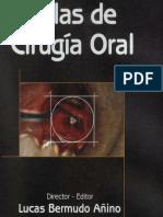 Atlas de cirugia oral - Bermudo.pdf
