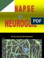 04 Sinapse Si Nevroglie.ppt