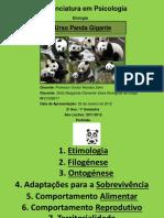 Apresentação (Trabalho - Urso Panda).pptx