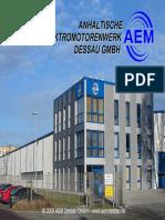 AEM Dessau Production Flux