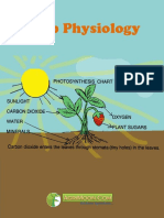 Crop Physiology