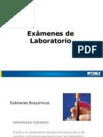 4.- Exámenes de Laboratorio