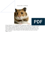 Dion My Pet is a Hamster