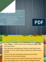 Perkembangan kognitif dan bahasa kanak-kanak dan awal remaja (official).pptx