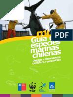 Guia de Especies Marinas Chilenas_ Reyes & Hüne 2015