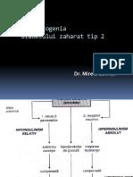 4.Etiopatogenia Dibetului Zaharat Tip2