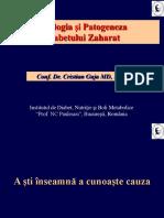 Curs Studenti Etiopatogenia DZ 2014 Prescurtat